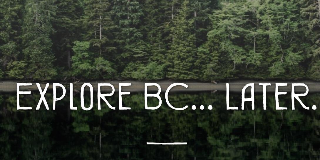 Los pajaritos de invierno quieren volver a Alaska